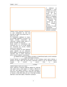 Fundații - Pagina 3