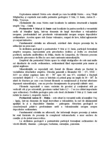 Analiza Variantelor de Inchidere a Lucrarilor Miniere Subterane de la Exploatarea Miniera Nistru Avand in Vedere Efectele Exploatarii Asupra Campurilor Miniere Vecine - Pagina 3