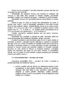 Analiza Variantelor de Inchidere a Lucrarilor Miniere Subterane de la Exploatarea Miniera Nistru Avand in Vedere Efectele Exploatarii Asupra Campurilor Miniere Vecine - Pagina 5