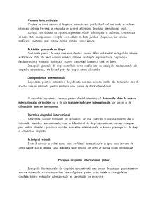 Drept International Public - Pagina 5