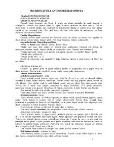 Clasa Dicotiledonatae - Pagina 1