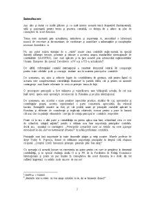Principiile Contabile - Pagina 2