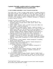 Principiile Contabile - Pagina 3
