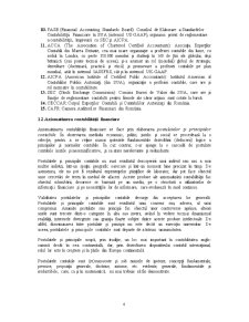 Principiile Contabile - Pagina 4