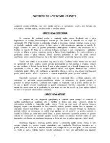 Notiuni de Anatomie Clinica - Pagina 2