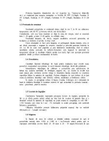 Porumb Siloz cu Boabe în lapte-ceară - Pagina 5