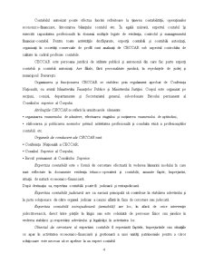 Deontologia Expertului Contabil, cu Studiu de Caz pe un Raport de Expertiza Contabila - Pagina 4