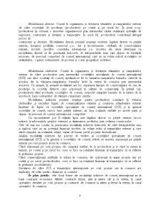 Fundamentări Privind Contabilitatea Tranzacțiilor de Comerț Internațional - Pagina 4