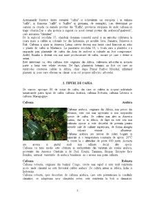 Cafeaua - Pagina 2