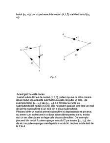 Grafurile Orientate și Neorientate - Pagina 3
