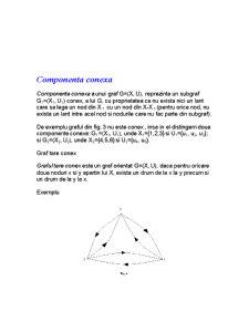 Grafurile Orientate și Neorientate - Pagina 4