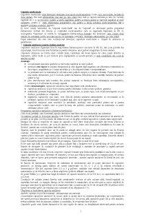 Farmacie - Pagina 1