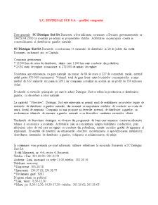 Auditul Sistemelor Informatice - Pagina 2