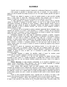 Necesarul de Energie al Organismului - Pagina 5