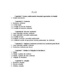 Norma Conflictuala in Raporturile de Familie - Pagina 1