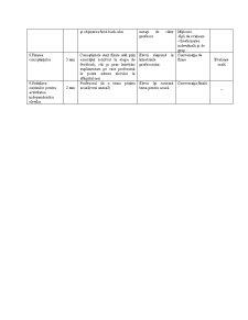 Proiect de Lectie - Pagina 3