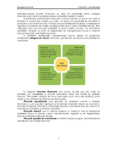 Managementul Riscului si Guvernanta Corporatista - Pagina 2