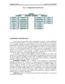 Managementul Riscului si Guvernanta Corporatista - Pagina 3