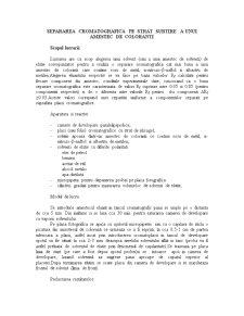 Separarea Cromatografica pe Strat Subtire a unui Amestec de Coloranti - Pagina 1
