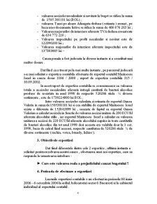 Raport de Expertiza Contabila - Pagina 4