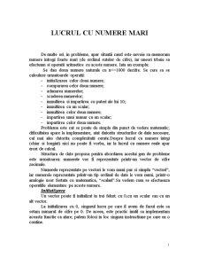 Lucrul cu Numere Mari - Pagina 1