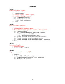 Psihologie Cognitivă - Pagina 4