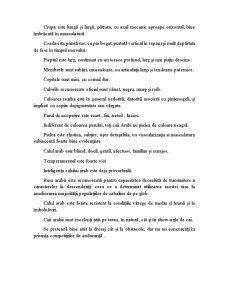 Pur Sânge Arab - Pagina 3