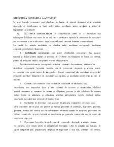 Bilantul Contabil si Pozitia Financiara a Intreprinderii - Pagina 5