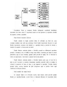 Fisuri în Elementele de Beton - Pagina 5