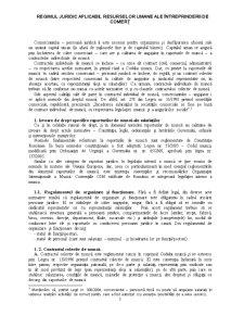 Regimul Juridic Aplicabil Resurselor Umane ale Întreprinderii de Comerț - Pagina 1