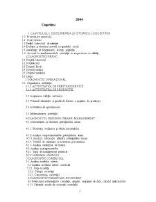 Lucrare Practica - Analiza Financiara la S.C. Metaco Int S.A. - Pagina 2