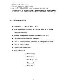 Lucrare Practica - Analiza Financiara la S.C. Metaco Int S.A. - Pagina 3