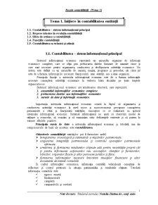 Initierea in Contabilitatea Entitatii - Pagina 1