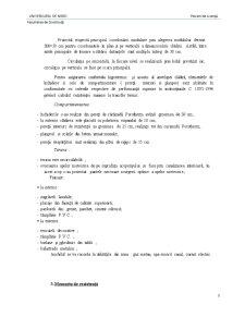 Realizarea unui Bloc de Locuinte - Pagina 5