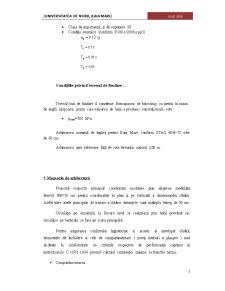 Realizarea unui Camin Studentesc - Pagina 5
