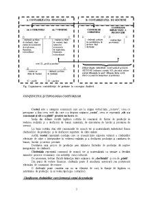 Contabilitate de Gestiune si Sistemul Informational al Costurilor - Pagina 3
