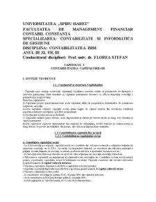 Contabilitatea IMM - Pagina 1