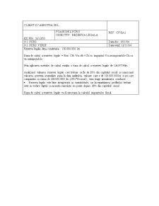 Audit Financiar - Pagina 4