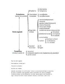 Celula Vegetală - Pagina 3