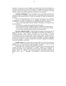 Riscuri Asociate Produselor Agroalimentare - Pagina 5