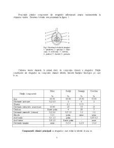 Tehnologia de Vinificare a Strugurilor după Procedeul în Alb - Pagina 5