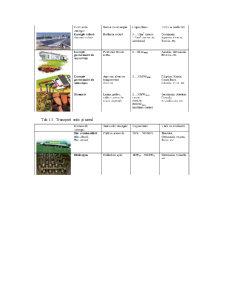 Sisteme de Conversie și Utilizare a Energiei Electrice - Pagina 5