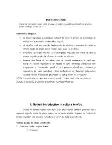 Micropropagare - Pagina 2