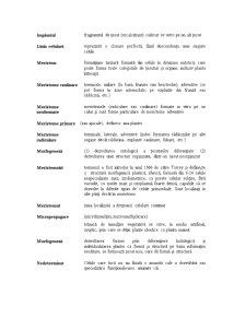 Micropropagare - Pagina 5