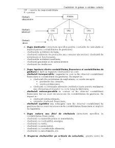 Contabilitate de Gestiune si Calculatia Costurilor - Pagina 5