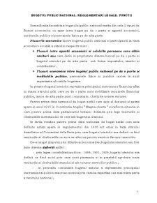 Contabilitate Publica - Pagina 3