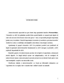 Tehnici de Biologie Moleculara in Analiza si Epidemiologia Enterovirusurilor - Pagina 3