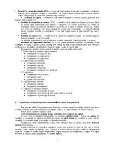 Întreprinderea și Contabilitatea - Pagina 2