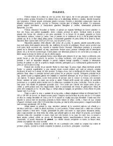 Polenul - Pagina 1