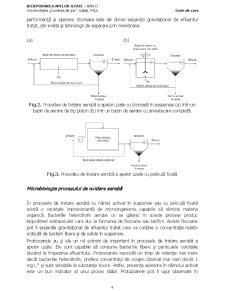 Bioepurarea Apelor Reziduale - Pagina 4